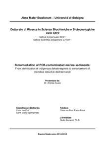 Phd thesis on image enhancement